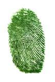 Fingerprint of grass. Isolated on white Stock Image