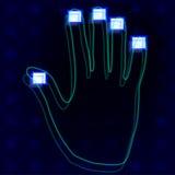 Fingerprint hands. Vector illustration of a fingerprint hands Stock Photography