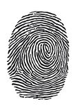 Fingerprint. Illustration of black fingerprint isolated on white background Royalty Free Stock Photos