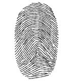Fingerprint - Illustration. Black and white fingerprint on a white background royalty free illustration
