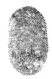 Fingerprint isolated. Image detail of a fingerprint B/W Royalty Free Stock Images