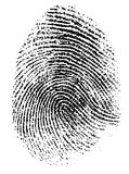 Fingerprint vector illustration. Fingerprint isolated on white vector illustration Royalty Free Stock Images