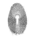 Fingerprint Lock. Fingerprint and Keyhole on White Stock Photography