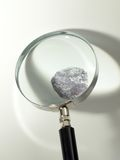 Fingerprint and magnifier Royalty Free Stock Image