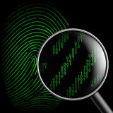 Fingerprint and magnifying glass. Vector fingerprint and magnifying glass Royalty Free Stock Photo