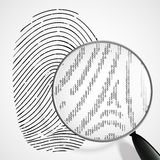 Fingerprint and magnifying glass. Vector fingerprint and magnifying glass Stock Image
