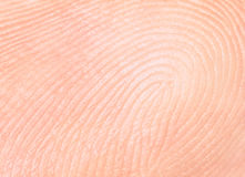 Fingerprint, papillary lines Royalty Free Stock Photo