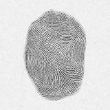 Fingerprint pattern isolated on white Royalty Free Stock Photography