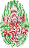 Fingerprint with Puzzle. In red Stock Image