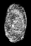 Fingerprint. Real finger fingerprint pattern isolated on a black background Stock Image