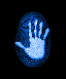 Fingerprint Security Identity Crime Hack Royalty Free Stock Image