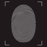 Fingerprint. Stylized vector image of the fingerprint Stock Photo