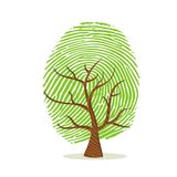 Fingerprint tree of green human finger print. Fingerprint tree made of green human finger print. Identity concept, environment help or earth care. EPS10 vector Royalty Free Stock Image