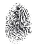 Fingerprint. Twisted lines sign isolated on white vector illustration in flat design. Black dactylogram personal identity code Stock Photo