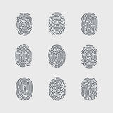 Fingerprint. Types of Fingerprint Patterns for Identity Person Security ID on Gray Background for Design Stock Photos