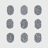Fingerprint. Types of Fingerprint Patterns for Identity Person Security ID on Gray for Design Royalty Free Stock Photos