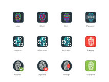 Fingerprint types and Scanning color icons. Pictogram collection of Fingerprint and Scanning, Loop, Whorl, Arch types, for ID detection devices and Security apps Stock Photography