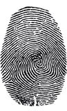 Fingerprint-vector Royalty Free Stock Photography