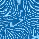 Fingerprint (vector) Royalty Free Stock Images