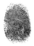Fingerprint vector illustration. Fingerprint isolated on white vector illustration Stock Images