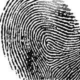 Fingerprint Vector Ilustration. A scalable vector illustration of a black fingerprint on a pure white background Stock Images