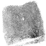 Fingerprint. On white background Royalty Free Stock Photos