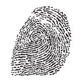 Fingerprint on white background. Vector black isolated fingerprint on white background Stock Photo