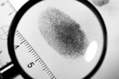 Fingerprint. Fingerprint on white paper card Royalty Free Stock Images