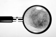 Fingerprint. Fingerprint on white paper card Stock Photo