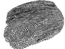 Fingerprint, white and transparent background. Black fingerprint on the white background Royalty Free Stock Photo
