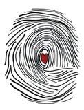 Fingerprint with the heart inside Stock Images