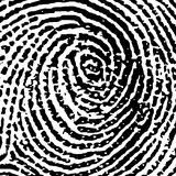 Fingerprint14crop6. Fingerprint Crop Vector Illustration
