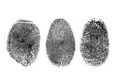 Fingerprints. Three finger prints isolated on white (vector Royalty Free Stock Photo