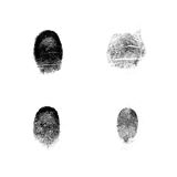Fingerprints. Very detailed fingerprint of four fingers, isolated on white background Stock Photo