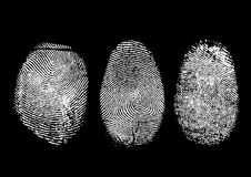 Fingerprints. Three finger prints isolated on black (vector Stock Image