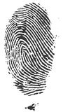 Fingerprints. Very detailed Fingerprint, available as EPS vector or JPG Stock Photography