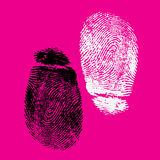 Fingerprints. Very detailed FingerprintS, available as AI vector or JPG Stock Photography