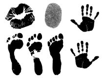Fingerprints and Footprints stock illustration