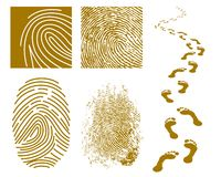 Fingerprints and Footprints. Vector illustration of fingerprints and footprints on a white background Royalty Free Stock Photography