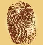 Fingerprints,  illustration. On vintage background Stock Images