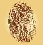 Fingerprints,  illustration. On vintage background Royalty Free Stock Photos