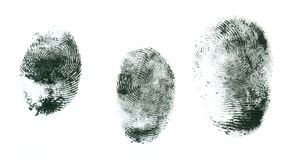 fingerprints on a white background Stock Images