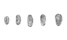 Fingerprints on a white background Royalty Free Stock Images