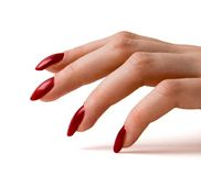 Fingers. With red nails on white Royalty Free Stock Images