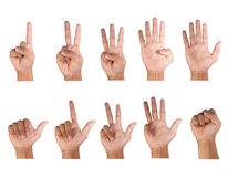 Fingers count. Ten styles white background, isolated stock images