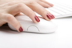 Fingers holding a mouse. Fingers with red nail holding a mouse Royalty Free Stock Image