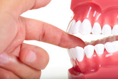 Fingers and teeth Royalty Free Stock Image