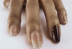 Fingrar av en perfekt naturlig hand arkivfoton