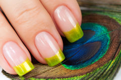 Fingrar med den gröna manicuren på påfågelfjädern Arkivfoto