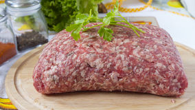finhackad tät meat förbereder klart till upp Royaltyfri Bild
